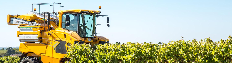 Machine à vendanger autonome : la vision 3D au service de l'agriculture